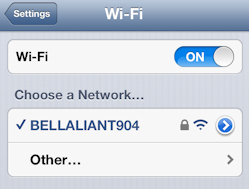 A checkmark will appear beside the wireless network name